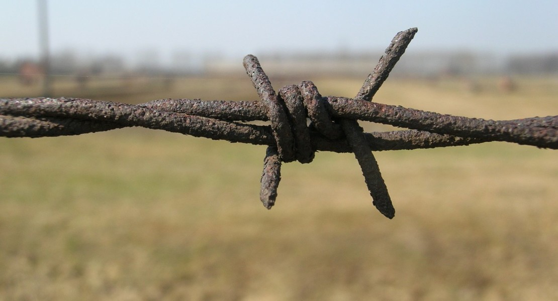 barbed-wire-1533289